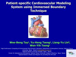 Patient-specific Cardiovascular Modeling System using Immersed Boundary Technique