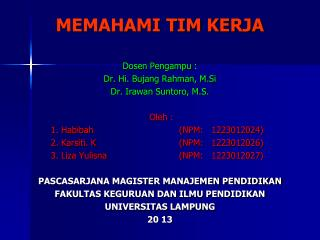 MEMAHAMI TIM KERJA Dosen Pengampu : Dr. Hi. Bujang Rahman, M.Si Dr. Irawan Suntoro, M.S. Oleh :