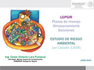 LGPGIR Planes de manejo Almacenamiento Sanciones ESTUDIO DE RIESGO AMBIENTAL 1er Listado (LAAR)
