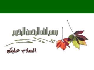 برنامج حماة المستقبل ال دورة التدريبية لإعــداد المدربين جمهورية مصر العربية