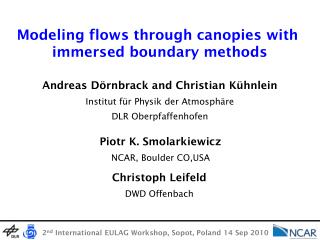 Modeling flows through canopies with  immersed boundary methods