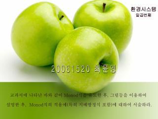 20061520  최윤영