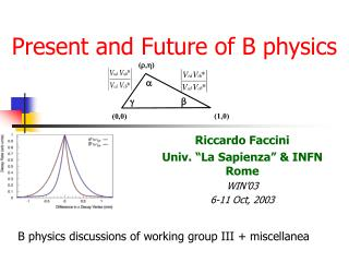 Present and Future of B physics