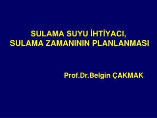 SULAMA SUYU İHTİYACI,  SULAMA ZAMANININ PLANLANMASI