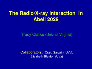 The Radio/X-ray Interaction  in Abell 2029