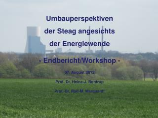 Umbauperspektiven  der Steag angesichts  der Energiewende - Endbericht/Workshop - 07. August 2012