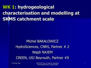 WK 1 : hydrogeological characterisation and modelling at SKMS catchment scale