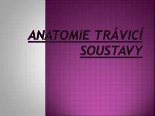 ANATOMIE TRÁVICÍ SOUSTAVY