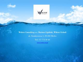 Wektor Consulting  s.c . Mariusz Lipi?ski, Wiktor Cicho? ul. Sienkiewicza 1, 39-300 Mielec