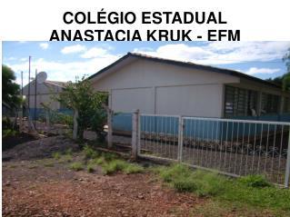 COLÉGIO ESTADUAL ANASTACIA KRUK - EFM