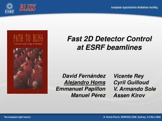 Fast 2D Detector Control at ESRF beamlines