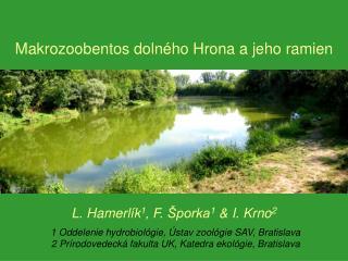 L. Hamerlík 1 , F. Šporka 1 &  I. Krno 2