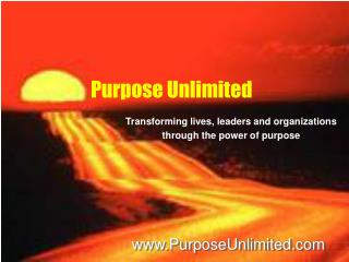Purpose Unlimited