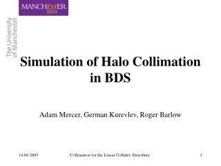 Simulation of Halo Collimation in BDS