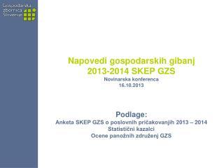 Napovedi gospodarskih gibanj  2013-2014 SKEP GZS  Novinarska konferenca  16.10.2013