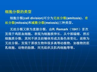 细胞分裂的类型    细胞分裂 (cell division) 可分为 无丝分裂 (amitosis) 、 有丝分裂 (mitosis) 和 减数分裂 (meiosis) 三种类型。