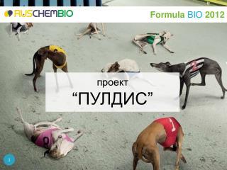 """проект """" ПУЛДИС """""""
