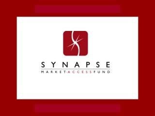 The Synapse Fund Vision