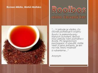 Rooibos alebo červený ker