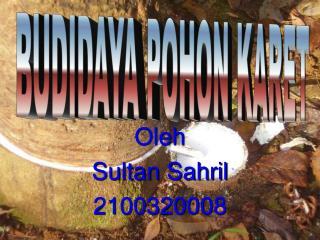 Oleh Sultan Sahril 2100320008