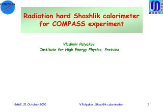 Radiation hard Shashlik calorimeter for COMPASS experiment