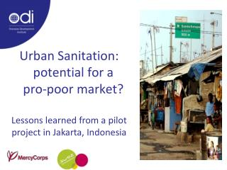 Urban Sanitation:  potential for a       pro-poor market?