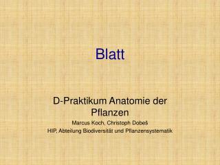 Blatt