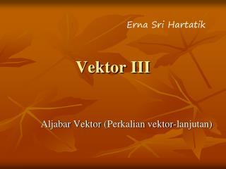 Vektor III