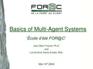 Basics of Multi-Agent Systems