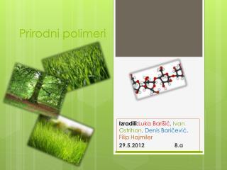 Prirodni polimeri