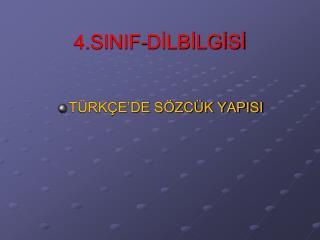 4.SINIF-DİLBİLGİSİ