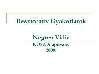 Resztorat�v Gyakorlatok Negrea  V�dia K�SZ Alap�tv�ny 2009.