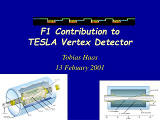 F1 Contribution to  TESLA Vertex Detector