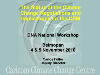 DNA National Workshop Belmopan 4 & 5 November 2010  Carlos Fuller Deputy Director