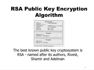RSA Public Key Encryption Algorithm