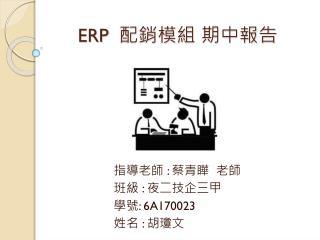 ERP   配銷模組 期中報告
