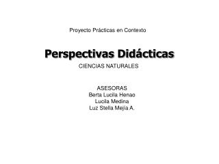 Perspectivas Did�cticas