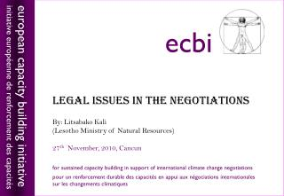 LEGAL ISSUES IN THE NEGOTIATIONS By:  Litsabako  Kali (Lesotho Ministry of Natural Resources)