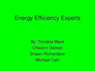 Energy Efficiency Experts