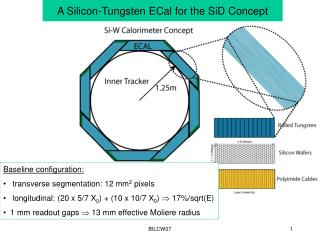 A Silicon-Tungsten ECal for the SiD Concept