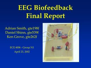EEG Biofeedback Final Report