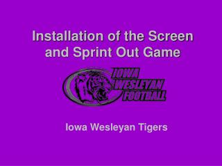 Installation of the Screen and Sprint Out Game