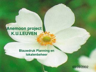 Anemoon project K.U.LEUVEN