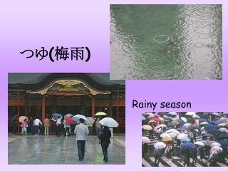 つゆ ( 梅雨 )