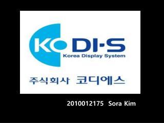 2010012175  Sora Kim