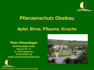 Pflanzenschutz Obstbau  Apfel, Birne, Pflaume, Kirsche