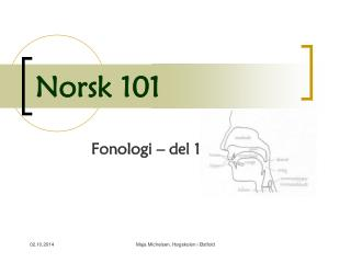 Norsk 101