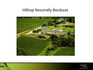 Hilltop Neszmély  Borászat