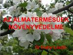 AZ ALMATERM S EK N V NYV DELME