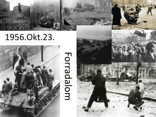 1956.Okt.23.